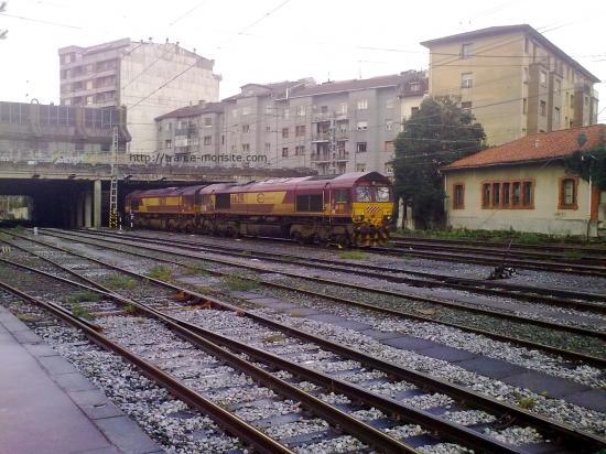 Class 66231 et 66219 de chez ECR en gare d'Irùn